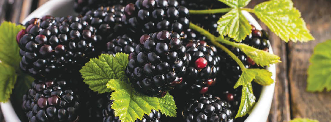 Each Blackberries